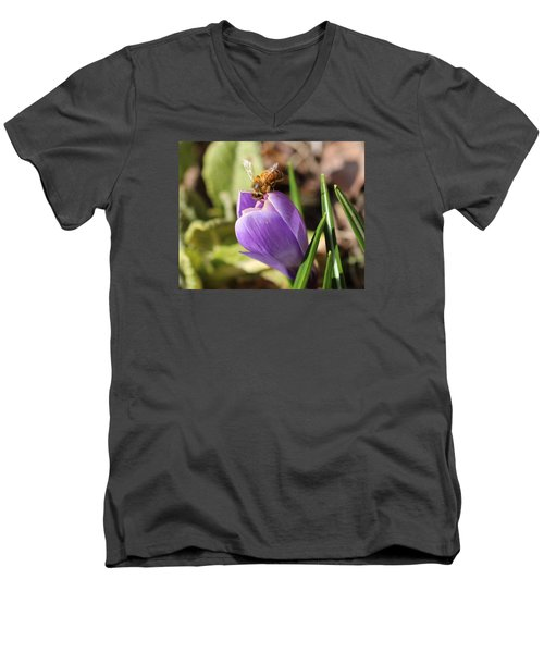 Anything Good In There? Men's V-Neck T-Shirt by Lucinda VanVleck