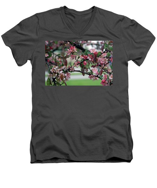 Men's V-Neck T-Shirt featuring the photograph Apple Blossom Time by Kay Novy