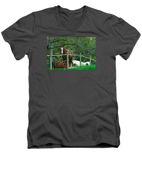 Apple Dreams Men's V-Neck T-Shirt
