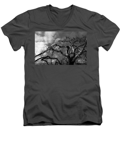 Apple Tree Bw Men's V-Neck T-Shirt