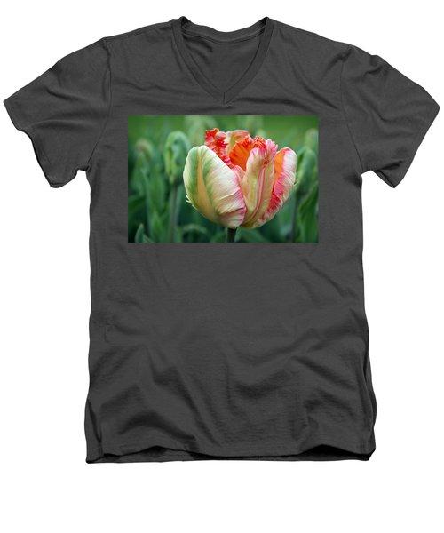 Apricot Parrot Tulip Men's V-Neck T-Shirt by Joseph Skompski