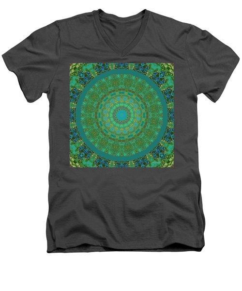 Aqua House 5  Men's V-Neck T-Shirt