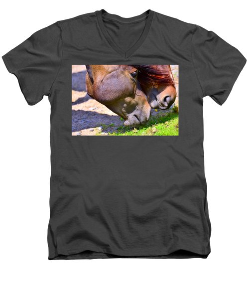 Arabian Horses Men's V-Neck T-Shirt