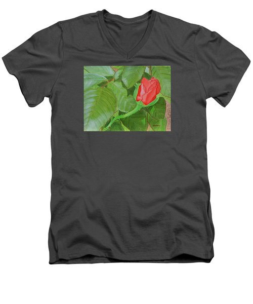 Arboretum Rose Men's V-Neck T-Shirt by Donna  Manaraze