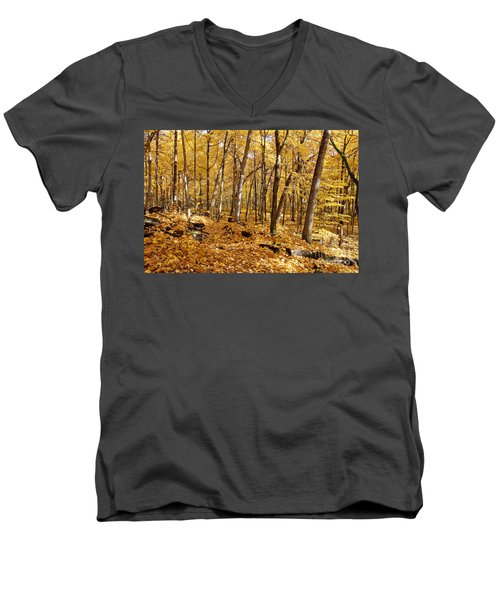 Arboretum Trail Men's V-Neck T-Shirt