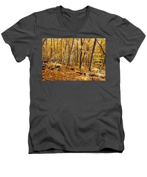 Arboretum Trail Men's V-Neck T-Shirt by Steven Ralser