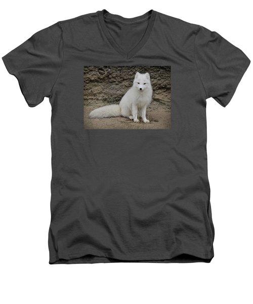 Arctic Fox Men's V-Neck T-Shirt by Athena Mckinzie