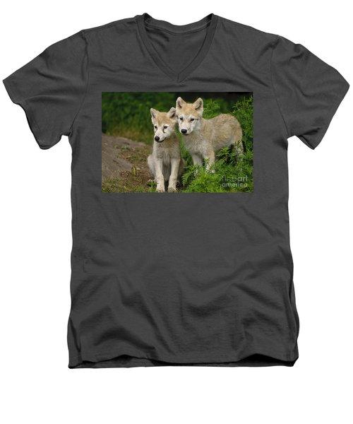 Arctic Wolf Puppies Men's V-Neck T-Shirt