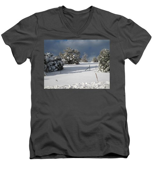 Arizona Snow 3 Men's V-Neck T-Shirt