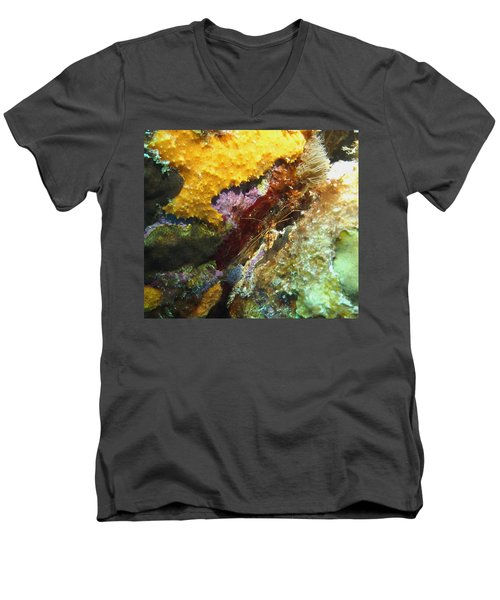 Arrow Crab In A Rainbow Of Coral Men's V-Neck T-Shirt by Amy McDaniel