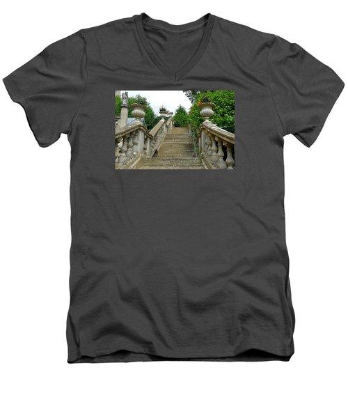 Ascending Garden Men's V-Neck T-Shirt