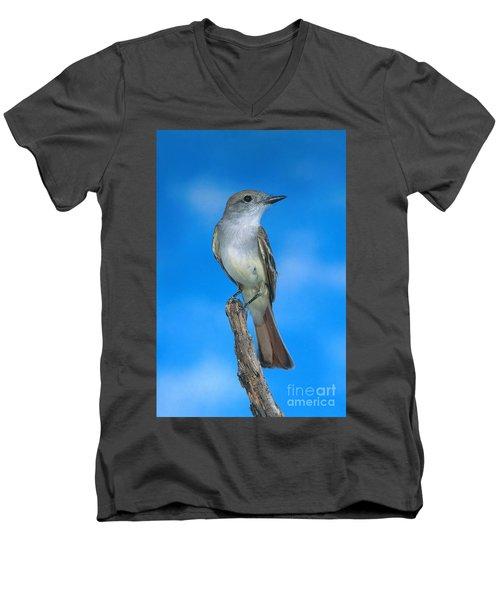 Ash-throated Flycatcher Men's V-Neck T-Shirt by Anthony Mercieca