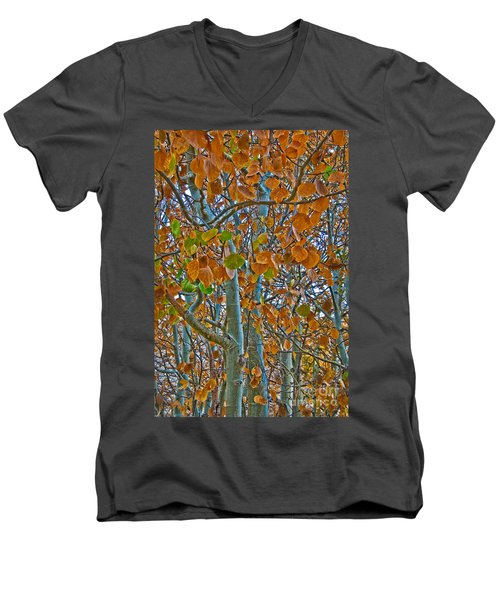Men's V-Neck T-Shirt featuring the photograph Aspen Leaves In The Fall by Mae Wertz