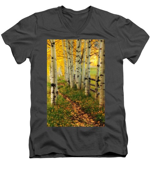 Aspen Path Men's V-Neck T-Shirt by Ronda Kimbrow