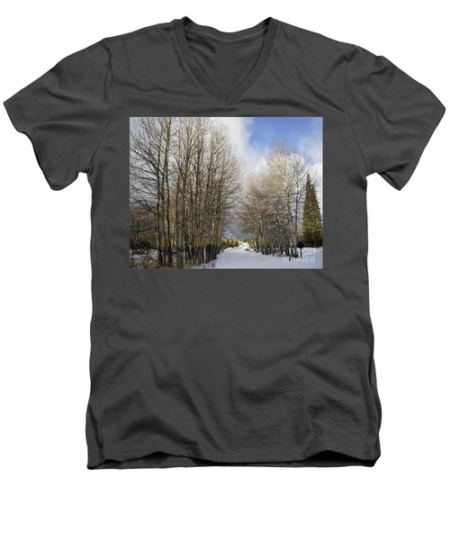 Aspen Trees Along Snowy Colorado Path Men's V-Neck T-Shirt by Loriannah Hespe