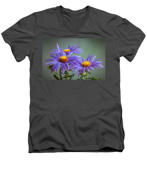Aster Men's V-Neck T-Shirt