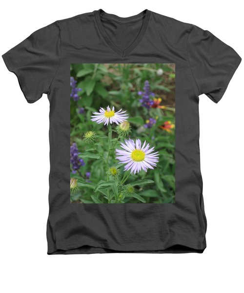 Asters In Close-up Men's V-Neck T-Shirt