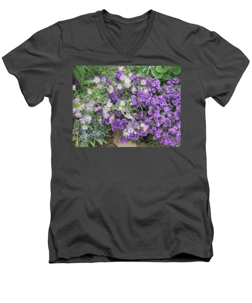 Asters Light And Dark Men's V-Neck T-Shirt