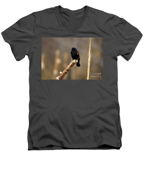 At Rest Men's V-Neck T-Shirt