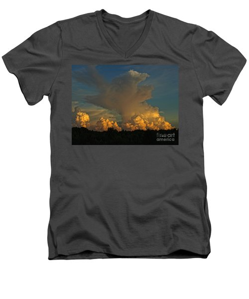 Athena Men's V-Neck T-Shirt by Shari Nees