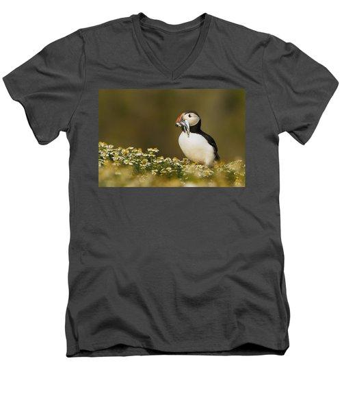 Atlantic Puffin Carrying Fish Skomer Men's V-Neck T-Shirt by Sebastian Kennerknecht