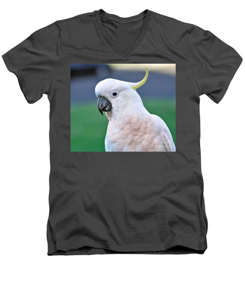 Australian Birds - Cockatoo Men's V-Neck T-Shirt by Kaye Menner