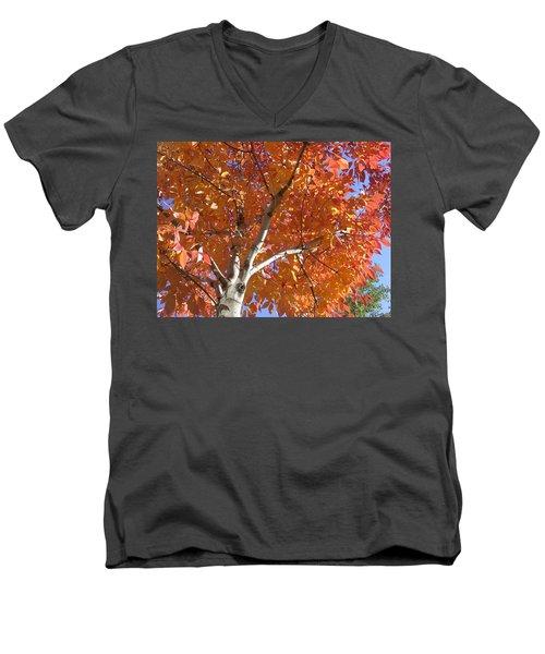 Men's V-Neck T-Shirt featuring the photograph Autumn Aspen by Shane Bechler
