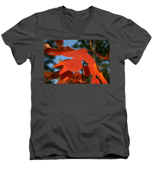 Men's V-Neck T-Shirt featuring the photograph Autumn Attention by Neal Eslinger