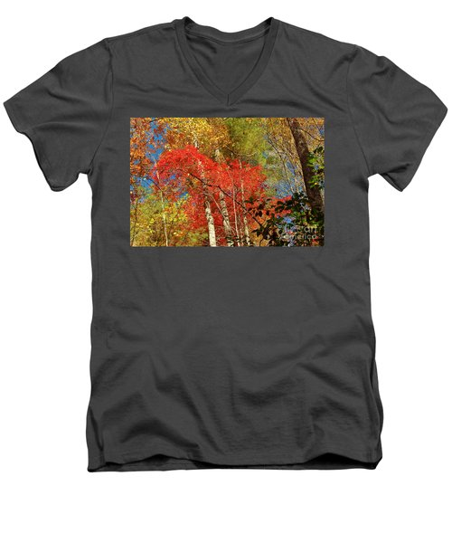 Autumn Colors Men's V-Neck T-Shirt by Patrick Shupert