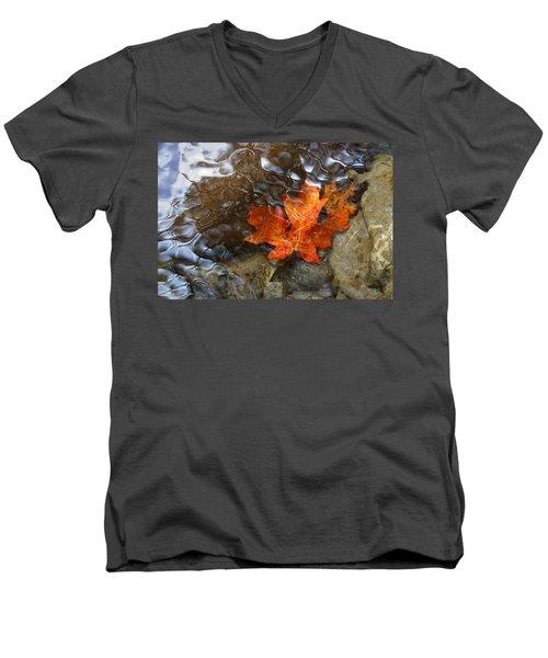 Autumn Down Under Men's V-Neck T-Shirt