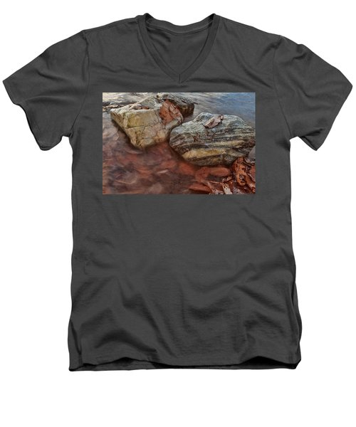 Autumn Drift Men's V-Neck T-Shirt
