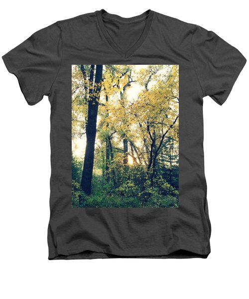Autumn Evening Men's V-Neck T-Shirt