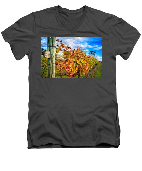 Autumn Falls At The Winery Men's V-Neck T-Shirt