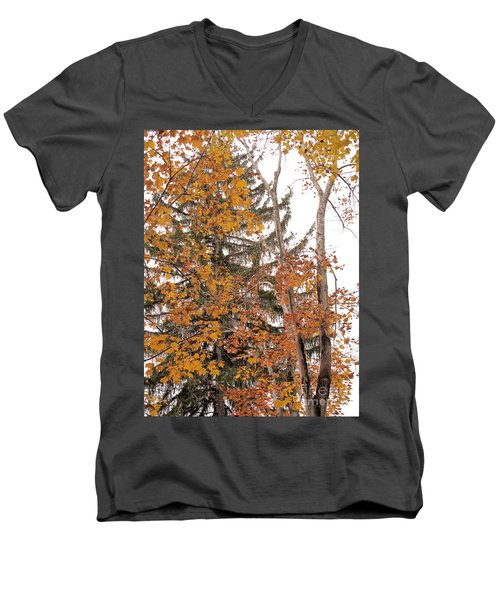 Men's V-Neck T-Shirt featuring the photograph Autumn Gold by Sandy McIntire