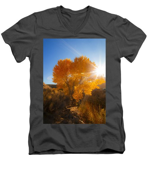 Autumn Golden Birch Tree In The Sun Fine Art Photograph Print Men's V-Neck T-Shirt