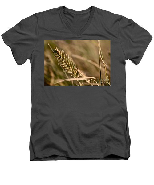 Autumn Grasses Men's V-Neck T-Shirt by Linda Bianic