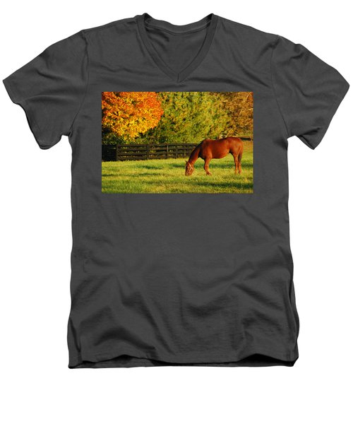 Autumn Grazing Men's V-Neck T-Shirt by James Kirkikis