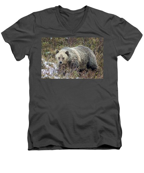 Men's V-Neck T-Shirt featuring the photograph Autumn Grizzly by Jack Bell