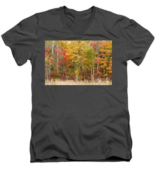 Autumn In Muskoka Men's V-Neck T-Shirt