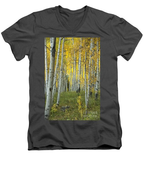 Autumn In The Aspen Grove Men's V-Neck T-Shirt
