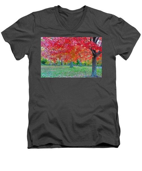 Autumn In Central Park Men's V-Neck T-Shirt