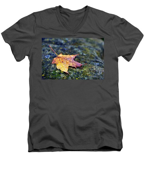 Autumn Leaf On Rocky Ledge Men's V-Neck T-Shirt