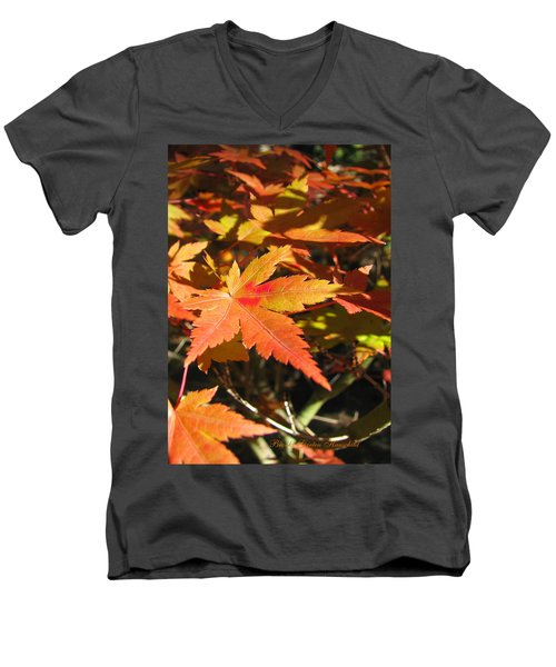 Autumn Leaves 9 - Autumn Leaves Macro Men's V-Neck T-Shirt