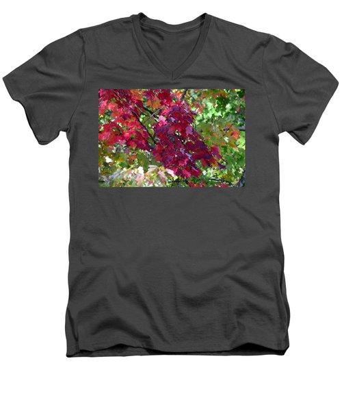 Autumn Leaves Reflections Men's V-Neck T-Shirt