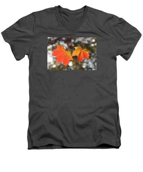 Men's V-Neck T-Shirt featuring the photograph Autumn Leaves by Dreamland Media