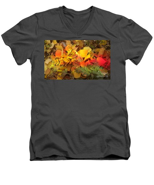 Autumn Masquerade Men's V-Neck T-Shirt