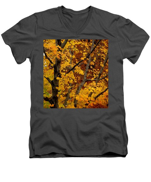 Autumn Moods 21 Men's V-Neck T-Shirt by Rodney Lee Williams