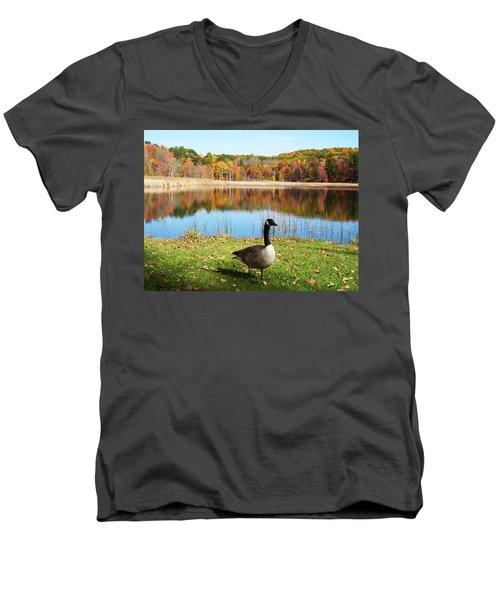 Autumn Pond Goose Men's V-Neck T-Shirt by Aimee L Maher Photography and Art Visit ALMGallerydotcom