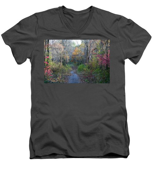 Autumn Silence No.2 Men's V-Neck T-Shirt
