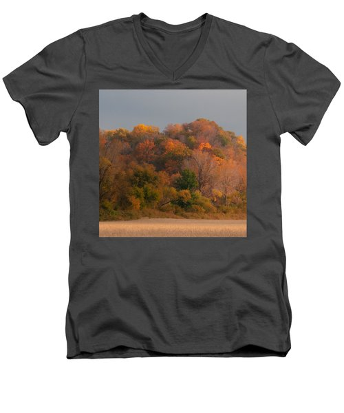 Autumn Splendor Men's V-Neck T-Shirt by Don Spenner